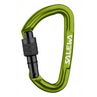 Hot G3 Screw Salewa
